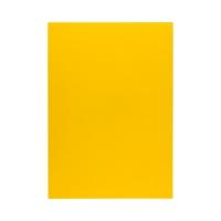 Okładka bindowania żółta 250g Chromolux