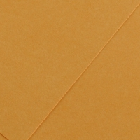 Karton kolor A3 185g bursztynowy Iris32 Canson