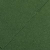 Karton kolor A3 185g ciemnozielony Iris210 Canson
