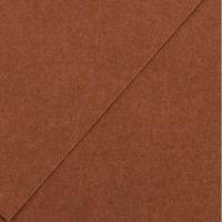 Karton kolor 70x100 czekoladowy Iris34 Canson