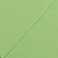 Karton kolor 70x100 pistacjowy Iris224 Canson