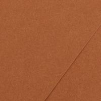 Karton kolor 70x100 orzechy Iris214 Canson