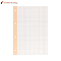 Wkład segregatorowy A4/50 kratka/kolorowa margines Interdruk