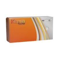 Chusteczki higieniczne kartonik 2w białe (100)