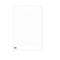 Blok flipchart A1/30 kratka 2x3