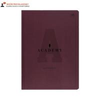 Brulion A4/96 kratka Academy Interdruk 90g